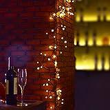 Globe String Light BaiYunPOY 8.2Ft LED Decorative String Lights for Garden,Wedding,Xmas Party