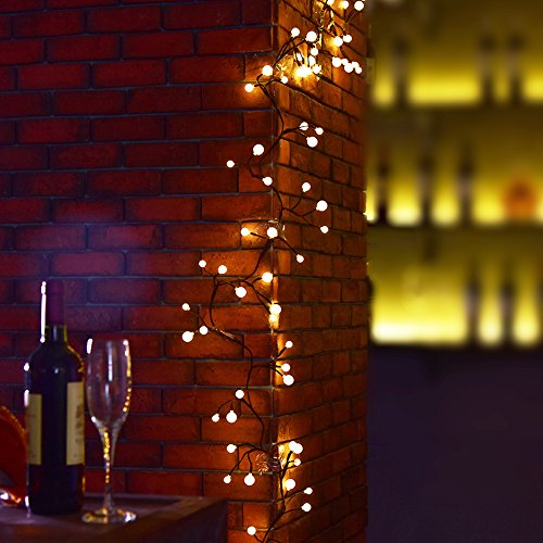 Globe String Light BaiYunPOY 8.2Ft LED Decorative String Lights for Garden,Wedding,Xmas Party
