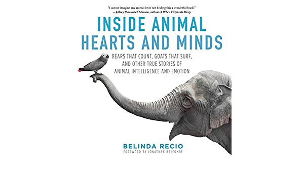 Inside Animal Hearts and Minds: Bears That Count, Goats That ...