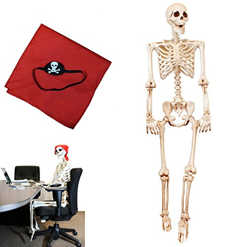 Price comparison product image Spooktacular Creations 5FT Pose-N-Stay Life Size Skeleton for Halloween Pose Skeleton Decoration