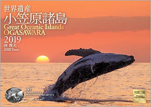 小笠原諸島 2019年 カレンダー ...