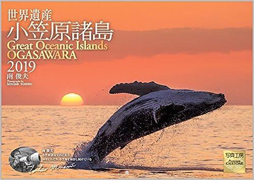Amazon.co.jp: 小笠原諸島 2019...