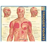 Trigger Points (Quick Study Academic)