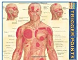 img - for Trigger Points (Quick Study Academic) book / textbook / text book