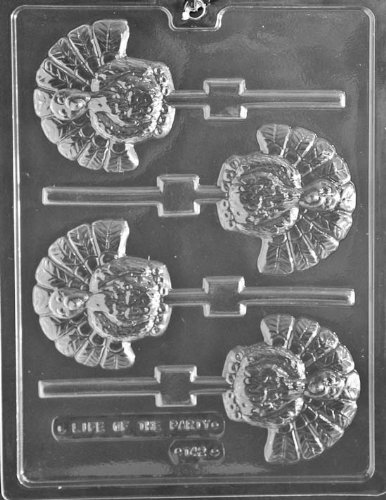 Turkey Lollipop Chocolate Mold - T042 - Includes Melting & Chocolate Molding Instructions ()