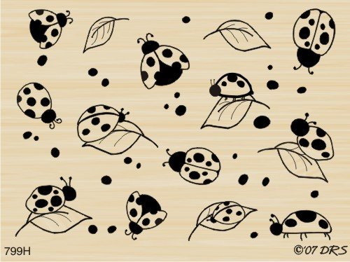 Ladybug Background Rubber Stamp By DRS Designs