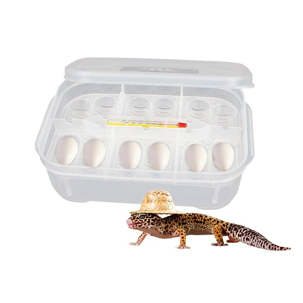Zaote 12-compartment Reptile Incubatoio box lucertola piccolo rettile allevamento box Reptile Breeding box Incubatore con termometro