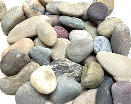 Glacier Rivers, River Rocks for Painting, Art Supplies for Kids, Arts and Crafts for Girls and Boys. Clay To Hold Your Rock. Extra Large. Approximately 3 to 5 Inches. 4Lbs by GLACIER RIVERS