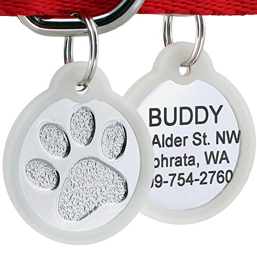 GoTags Paw Print Round Stainless Steel Pet ID Tag for Dogs and Cats, Personalized, Engraved with up to 4 Lines of Custom Text, (Paw Size Regular with Tag Silencer) (Pet Paw Id Tag)