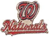 Washington Nationals Primary Plus Logo Pin