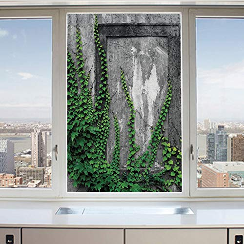 3D Decorative Privacy Window Films,Ivy on Wall with Aged Antique Empty Picture Frame as Window Creative Art,No-Glue Self Static Cling Glass Film for Home Bedroom Bathroom Kitchen Office 17.5x36 Inch