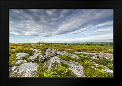WV, Landscape in Dolly Sods Wilderness Area Framed Art Print by Obrien, Jay