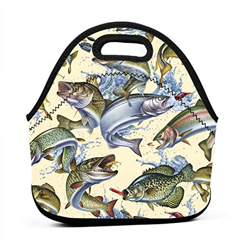 Janeither 3D Lifelike Cream Fish Portable Reusable Lunch Bag Waterproof Picnic Tote Insulated Cooler Zipper - Baby Dvd Nba