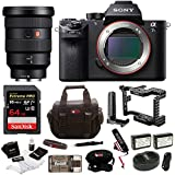Sony Alpha a7SII Camera (Body) + Sony FE 12-24mm f/4 G Ultra Wide-Angle Zoom