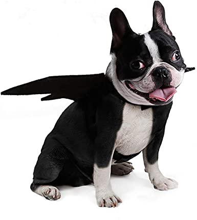 Fashion Animal Pet Dog Cat Clothes Bat Vampire Fancy Dress Costume Outfit Black