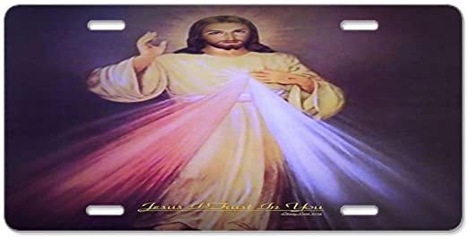 Front License Plate Aluminum License Plate Divine Mercy Gold CafePress Vanity Tag