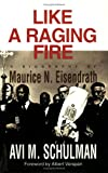 Like a Raging Fire, Avi M. Schulman, 0807405256