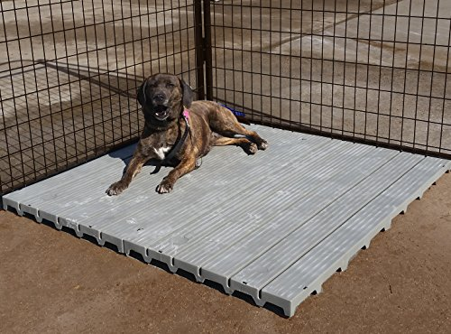 2′ X 4′ K9 Kennels Raised dog kennel comfortable surface Flooring