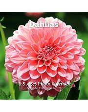 Dahlias 8.5 X 8.5 Calendar September 2021 -December 2022: Monthly Calendar with U.S./UK/ Canadian/Christian/Jewish/Muslim Holidays-Flowers Nature