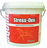DPD Squire Stress-DEX Oral Electrolyte for Horses - 20 Pound