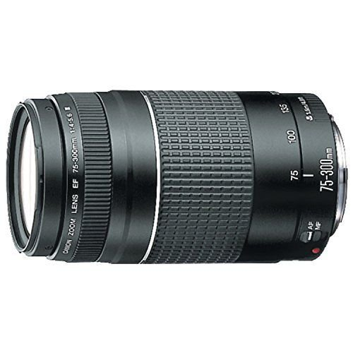 Canon EF 75-300 mm f/4-5.6 III Telephoto Zoom Lens (OpenBox) Camera Lenses at amazon
