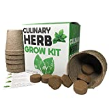 Culinary Herb Garden Kit - Easily Grow 10 Culinary Herbs With This Indoor Planter By Geo Box - Starter Kit Includes Everything To Grow 10 Herbs From Seed