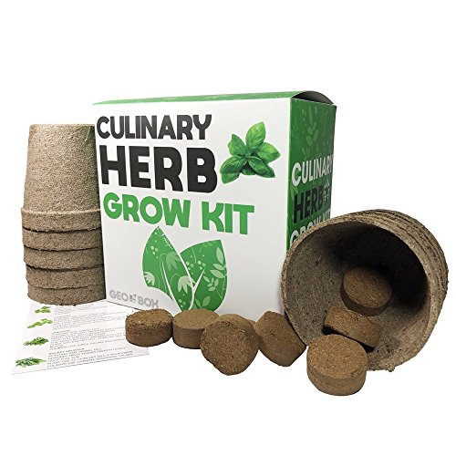 Culinary Herb Garden Kit - Easily Grow 10 Culinary Herbs With This Indoor Planter By Geo Box - Starter Kit Includes Everything To Grow 10 Herbs From Seed by Geo Box