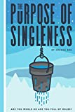The Purpose of Singleness: Are you whole or are you full of holes?