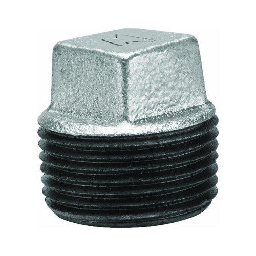 Anvil International 8700159703 Galvanized Square Head Pipe Plug ()