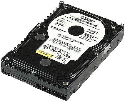 WD Raptor WD740ADFD - Hard drive - 74 GB - internal - 3.5
