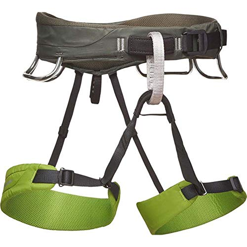 Black Diamond Momentum Climbing Harness - Men's Verde X-Large