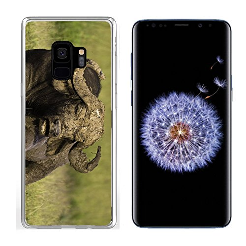 Liili Samsung Galaxy S 9 Clear case Soft TPU Rubber Silicone Bumper Snap Cases African Cape Buffalo Photo 20215705 ()