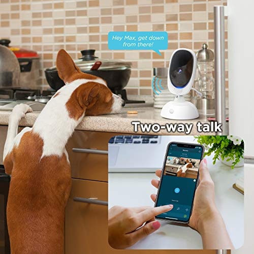 51M5qUpjOOL - Motorola Connect40 Wireless Security Camera - Family Video Intercom Communication System - Infant, Elderly, Pet Monitor - App, WiFi, Voice Assistant-Enabled With Digital Pan, Zoom, Tilt, Night Vision