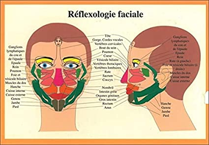 carte points reflexologie visage Planche reflexologie faciale   17x24 cm: Collectif: Amazon.fr
