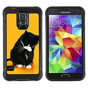 Paccase / Suave TPU GEL Caso Carcasa de Protección Funda para - Funny Lol Wtf Cat - Samsung Galaxy S5 SM-G900