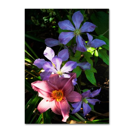 Trademark Fine Art Clematis and Lily Artwork by Kurt Shaffer, 18 by 24-Inch Canvas Wall (Clematis Lily)