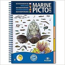 Marine Pictolife Mer