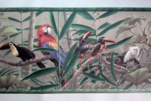 Rainforest Birds Monkey Jungle Wallpaper Border