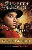 Dark Road Home (Edge of Freedom) (Volume 2)