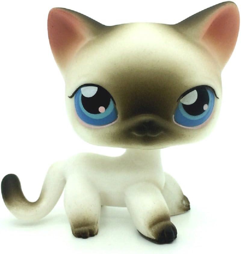 Amazon Com Rare Black White Short Hair Siamese Cat Blue Eyes Llps 5 Plmxsmx Toys Games