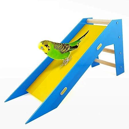 ZWW Juguetes para Pájaros, Acrílico Loro Rompecabezas Jugar Escalera Deslizante Juguetes Entrenamiento Habilidades Intelectuales Escalera De Escalada Divertida: Amazon.es: Hogar