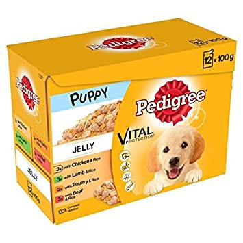 Pedigree Puppy Pouches Meat In Jelly 12 X 100g Pet Supplies Amazon Com