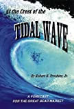 img - for At the Crest of the Tidal Wave: A Forecast for the Great Bear Market book / textbook / text book