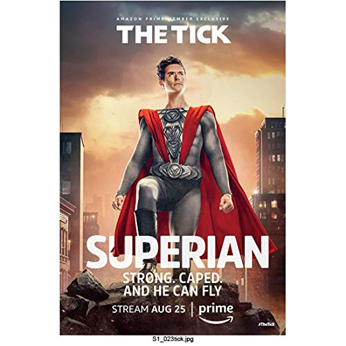 Brendan Hines 8 Inch x 10 Inch Photograph The Tick (TV Series 2017 -) in Silver Costume w/Red Cape