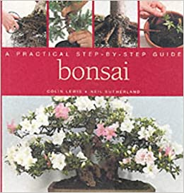 Book Bonsai: A Practical Step-by-step Guide