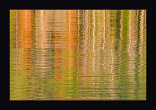USA, Idaho Reflections on Redfish Lake by Don Paulson - 18