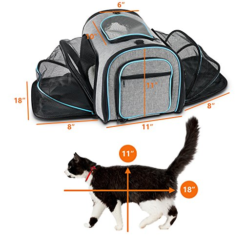 Airline Approved Pet Carrier Expanable- SUKI&SAMI Four Side EXpansion Oxford Portable Sofe-Sided Air Travel Bag for Small or Medium Dog and Cats by SUKI&SAMI (Image #3)
