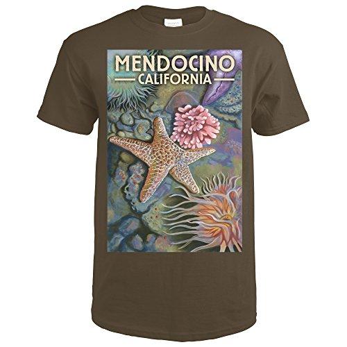 mendocino chocolate - 8