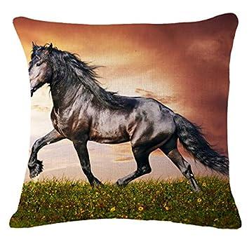 Amazon.com: Isabel Saenz 45x45cm Sofa Seat Cushion Covers ...