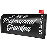 NEONBLOND Classic Design I'm a Professional Grandpa Magnetic Mailbox Cover Custom Numbers